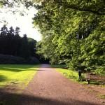Eindhoven park
