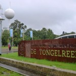 tongelreep